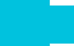 logo_color-300x188